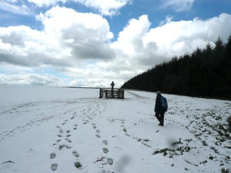 lone figure:snow:Cntlin