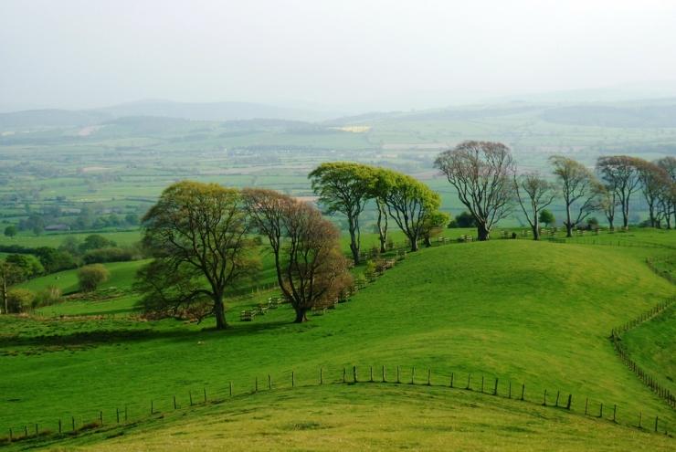 linley-hill